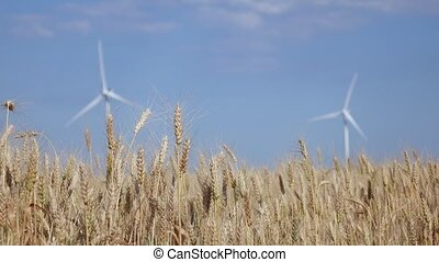 Wind farms in rural areas against the background of agricultural fields. Close up
