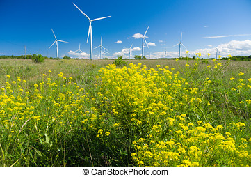 Wind generators area with colza flowers in front. Wide angle view