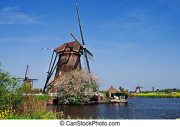 Wind Mill - Traditional Dutch A water wind mill, spring,...