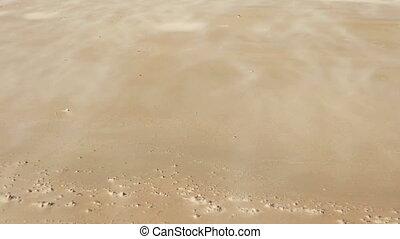 wind move sand on desert dune