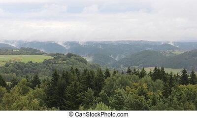 Wind on trees and fog on hills