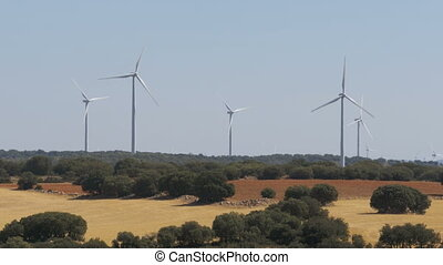 Wind Power in the Desert of Spain