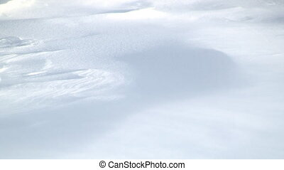 Wind Scuplted Snowdrift - Snowdrift Sculpted by Wind Driven...