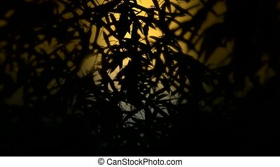 wind shaking bamboo silhouette,Hazy style,quiet atmosphere...