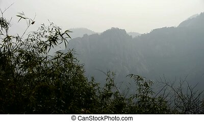 wind shaking bamboo,Mountains,hill,quiet atmosphere in...