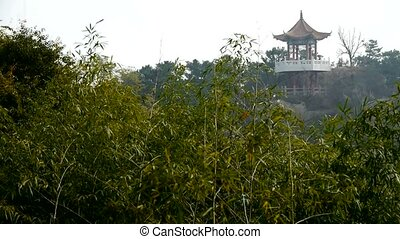 wind shaking bamboo,Pavilion on hill in distance.