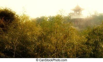 wind shaking bamboo,Pavilion