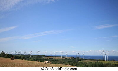 Wind Turbine and field