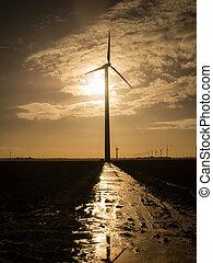Wind turbine as the sun rises