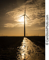 Wind turbine as the sun rises