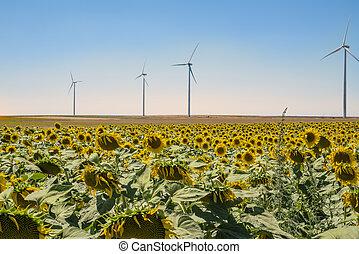 wind turbine under the blue sky with sun flower