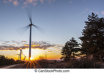 Wind Turbines at Sunrise 1