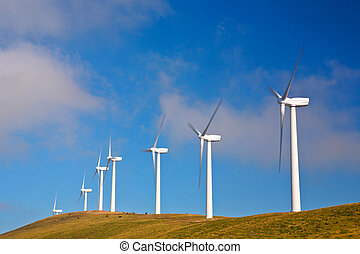 Wind turbines farm on sunset in summer