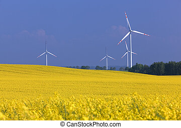 Wind turbines farm on the rape field. Ecology, environment