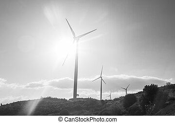Wind turbines generating electricity - energy conservation...