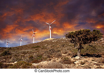 Wind turbines in movement, small tree at a beautiful...