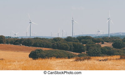 Wind Turbines in the Desert of Spain