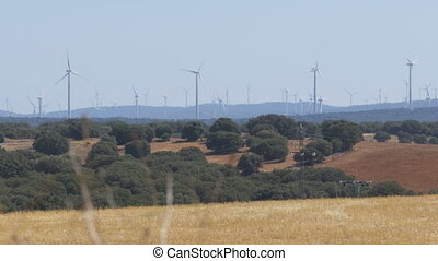 Wind Turbines in the Desert of Spain