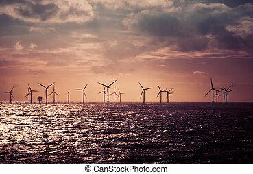 Wind turbines in the North Sea