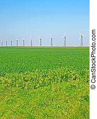 Wind-turbines on a green field