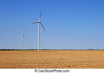 wind turbines on wheat field green energy