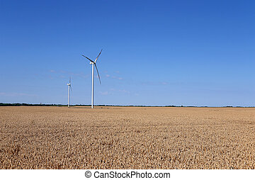 wind turbines on wheat field landscape