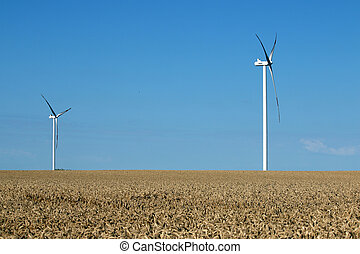 wind turbines on wheat field renewable energy