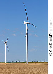 wind turbines on wheat field