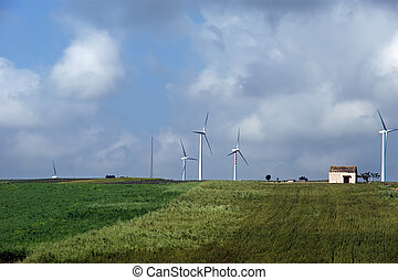 Wind turbines. Sicily, Italy