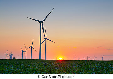 Wind Turbines - Wind turbines in a field at sunset