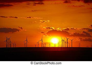 Wind turbines farm at sunset in Dobrogea region of Romania.