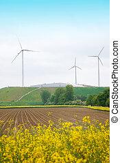 wind turbines - rape seed field and winmills in a beautiful...
