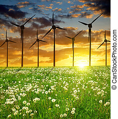 Wind turbines on meadow in the sunset. Alternative energy.