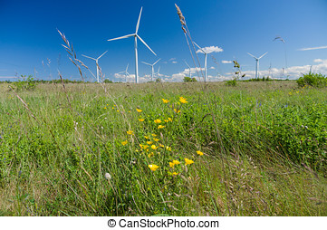 Wind turbines under blue sky, flowers and grass in front