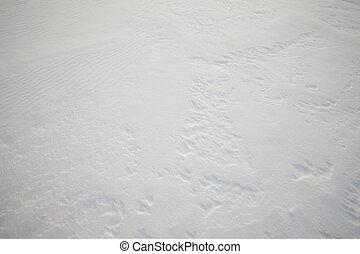 Windblown snow surface, background pattern