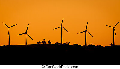 windfarm, hos, solnedgång