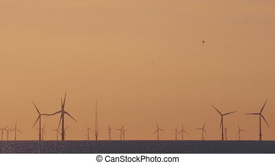 Windfarm on the sea at sunset