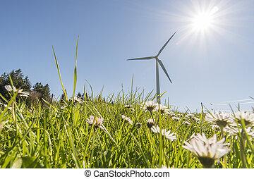windgenerator, prato