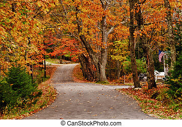 Winding autumn road - Winding autumn country road in New...