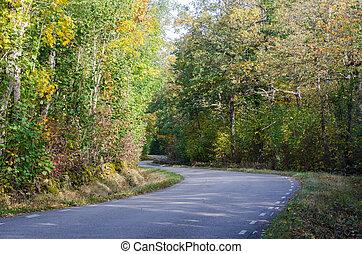 Winding country road in fall season