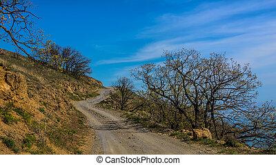Winding dirt, rocky road
