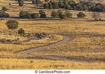 Winding dirt trail in the yellow grass of fall
