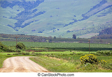 Winding Farm Road With Irrigation System In Corn Field