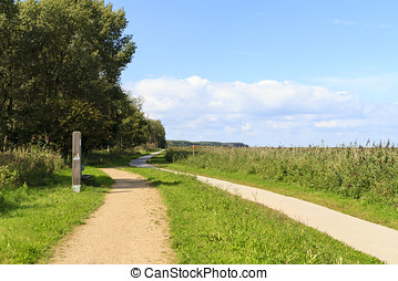 Winding footpath and cycle path through the nature reserve...