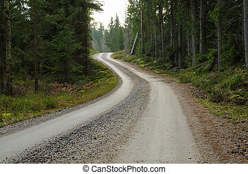 Winding gravel road