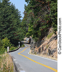 Winding Hillside Road