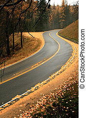 Winding Mountain Fall Road