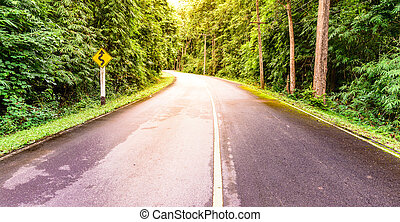 Winding road and sign label with sunlight in national park forest.