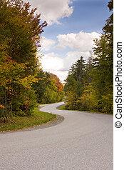 Winding Road During Autumn Season in Vermont