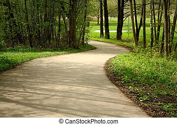 Winding road in a park in spring